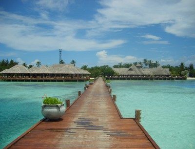 Jetty Area (8)